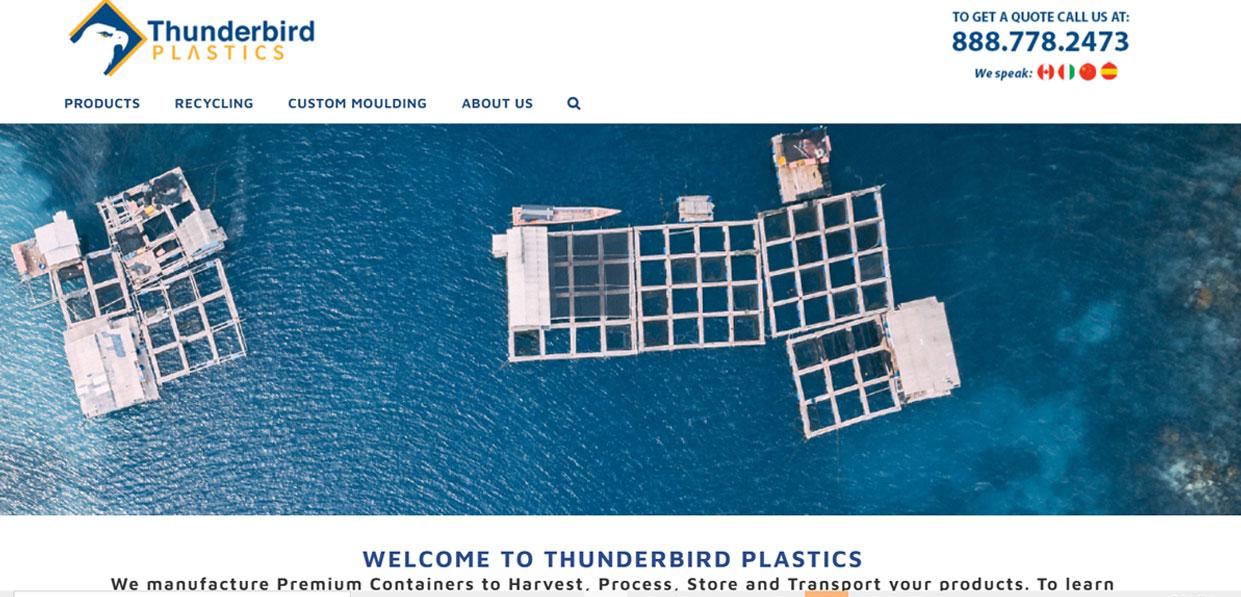 THUNDERBIRD PLASTICS WEBSITE DESIGN